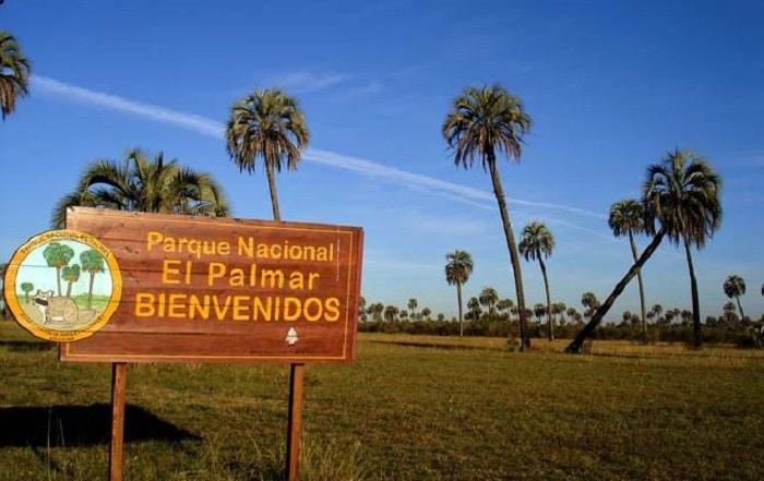 El Parque Nacional El Palmar reabre sus puertas - Turismo   San José Web